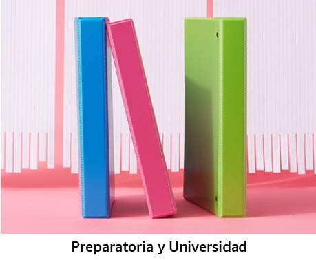 Preparatoria y universidad