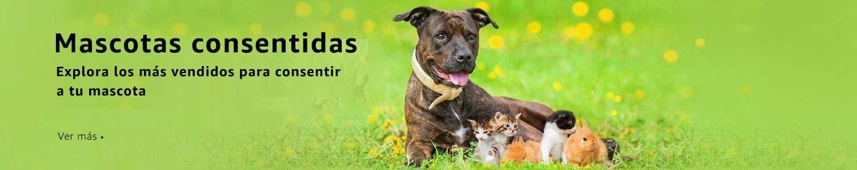 mascotas consentidas