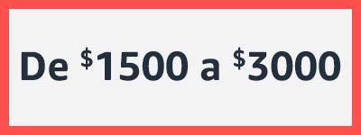 $1500 a $3000