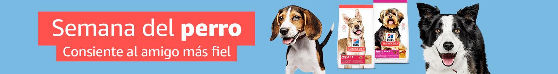 Alexa celebra el día mundial del perro y te da algunos tips
