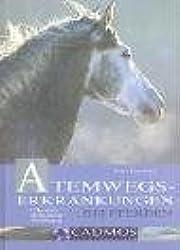 Atemwegserkrankungen bei Pferden: Erkennen, Behandeln, Vorbeugen