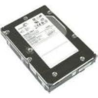 SEAGATE 300GB, 15K SAS w/ tray