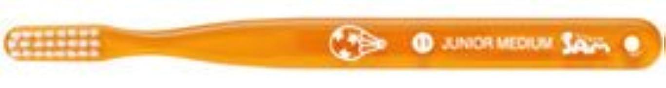 賭け生物学スキッパー【サンデンタル】【歯科用】サムフレンド ベーシック #11 ジュニア?ミディアム 30本【歯ブラシ】【ふつう】6色アソート