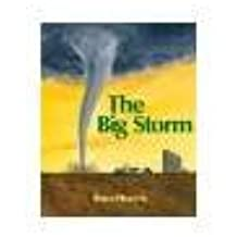 The Big Storm by Hiscock, Bruce [Boyds Mills Press,2008] (Paperback) Reissue