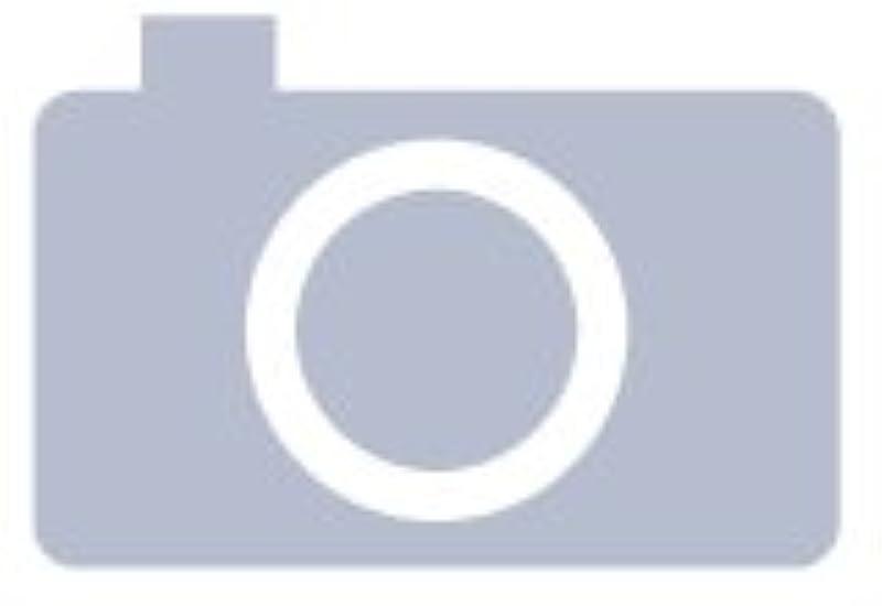 【보급형】 오존 발생량5000mg이상 업무용 오존 탈취기 【일본 사양・전기 용품 안전법 준거】 오존 발생기 공기 청정기 (교환용 플레이트 (Model:AZ291K(5000-HI)용))