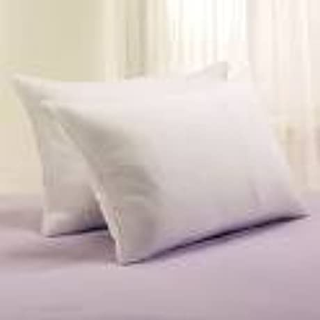 Manchester Mills Down Dreams 4 King Pillow Set 4 Pillows