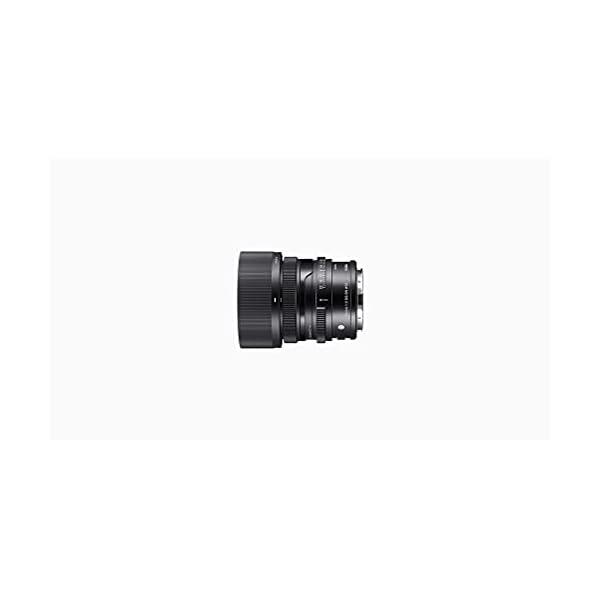 RetinaPix Sigma 35mm f/2 DG DN Contemporary Lens for Sony E Mount Mirrorless Cameras