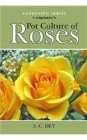 (Pot Culture of Roses (Agro's Gardening))