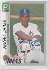 angel-jaime-baseball-card-1996-publix-super-market-st-lucie-mets-base-24