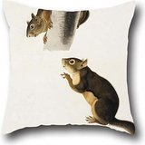 20 X 20 Inch / 50 By 50 Cm Oil Painting John James Audubon - Douglas's Squirrel Throw Pillow Covers ,twice Sides Ornament And Gift To Home Theater,bf,chair,play Room,wedding,lounge (Mini Houndstooth Rug)