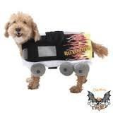 Road Dog Costume with Flames, Size X-Small