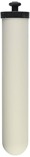Doulton Ultracarb 10'' Water Filter Candle, 4-pack (W9123053) by Doulton