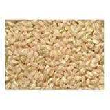 Lone Pine Organic Short Grain Brown Rice, 50 Pound -- 1 each.