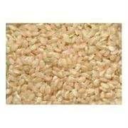 Lone Pine Organic Short Grain Brown Rice, 50 Pound -- 1 each. by Lone Pine