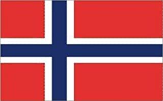 product image for 4x6' Norway Nylon Flag - All Weather, Durable, Outdoor Nylon Flag - All Star Flags