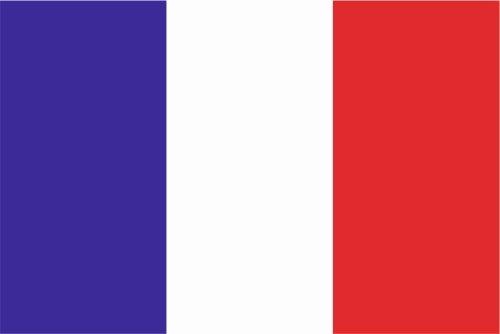 CARSTICKERフラグデカールステッカー2サイズ色でフランスラミネート非常に長い丈夫 6