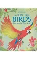 Birds (Luxury Lift The Flap Learners)