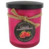 【特価】 Strawberry ScentedレッドFrosted Jar Jar Candle Candle – B077LMN26P 15オンス B077LMN26P, 和の風:74fa2ad7 --- a0267596.xsph.ru