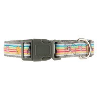 Disney Winnie the Pooh X Small Adjustble Collar Grey
