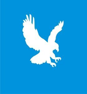 EAGLE STENCIL Snazaroo Face Painting Stencil
