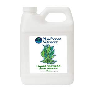 Blue Planet Nutrients Liquid Seaweed Quart (32 oz) | Liquid Kelp Supplement | Hydroponic Aeroponic Soil Coco Coir | for All Plants & Gardens