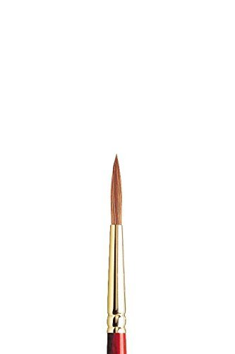 Winsor and Newton Sceptre Gold II Brush Designers Round-Short Handle 6 Size: #6 Style: Series 202 Designers', Model: 5182706, Office Shop by Business & School Supply