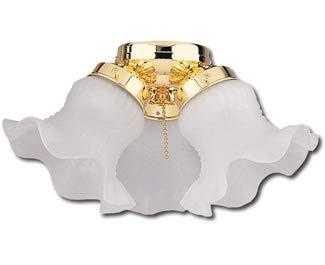 Craftmade ECK11WW Ceiling Fan Light Kit, 3-Light 180 Watt, White