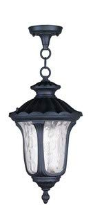 Livex Lighting 7854-04 Oxford - One Light Outdoor Hanging Lantern, Black Finish with Clear Water Glass