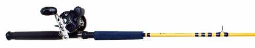 Eagle Claw Troll Combo Rod and Reel Level Wind with Counter (2 Piece)