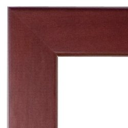OCCIDENTAL COLLEGE Diploma Frame with Artwork in Standard Mahogany Frame
