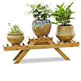 Desktop Plant Stand, Rerii Natural Bamboo Tabletop Small Plants Stand, Flower Potted Display Shelf for Home & Office - Only Fit for Small Potted Plants