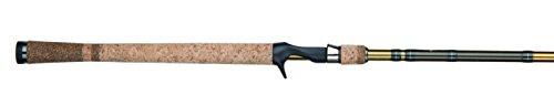 Fenwick Eagle Salmon/Steelhead -