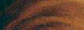 (Rembrandt Artists Oil 40ml Burnt Umber )