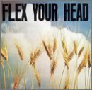 Flex Your Head by The Teen Idles, The Untouchables, State of Alert, Minor Threat, Government Issue (1993) Audio CD