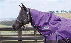 Purple Black Full Purple Black Full Weatherbeeta Comfitec Plus Dynamic Neck Cover