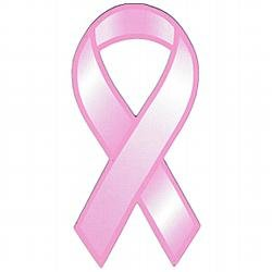 Pink Ribbon Magnet 3-7/8 in x 8 in