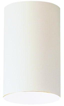 Lighting Kichler Ceiling Light (Kichler 9834WH Indoor/Outdoor Ceiling 1-Light, White)