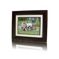 Hewlett Packard Frame - HP 8