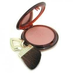 Guerlain Terracotta Blush & Sun Sheer Bronzing Blush