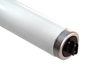 Fluorescent Light Tubes F30T12CWHO Cool White (Case of 10)