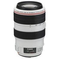 Canon EF 70-300mm f/4-5.6L IS USM Autofocus Telephoto Zoom Lens - Gray Market