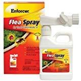 Enforcer Flea Spray for Yards Concentrate EFSY163