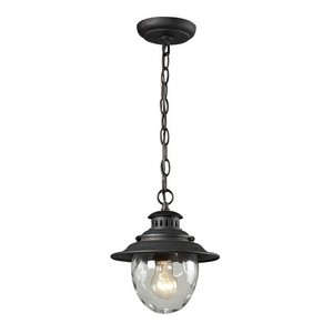 Elk 45041/1 Searsport 1-Light Outdoor Pendant with Water Glass Diffuser, 8 by 10-Inch, Weathered Charcoal Finish