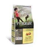 Pronature Holistic Chicken and Sweet Potato Formula Puppy 6 Pound Bag, My Pet Supplies
