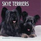 Cal 99 Skye Terriers