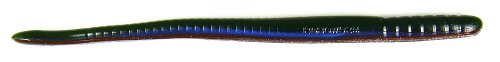 Roboworm Fat Straight Tail Worm Bait (Aaron's Magic, 6-Inch), Outdoor Stuffs