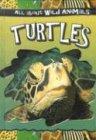 Turtles, , 0836841239