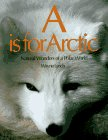 A Is for Arctic, Wayne Lynch, 1552090485