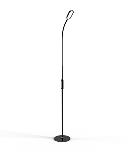 LED Floor Lamp by Lustrat with Flexible Gooseneck for Desk Reading, Bedroom, Living Room, and Office (Tall, Adjustable Light, 5-Level Dimmable, Timer, Remote Control) (Black)
