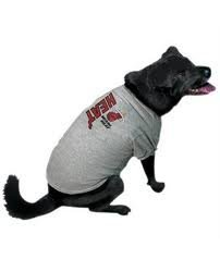 NBA Miami Heat Pet T-Shirt, Large, Team Color